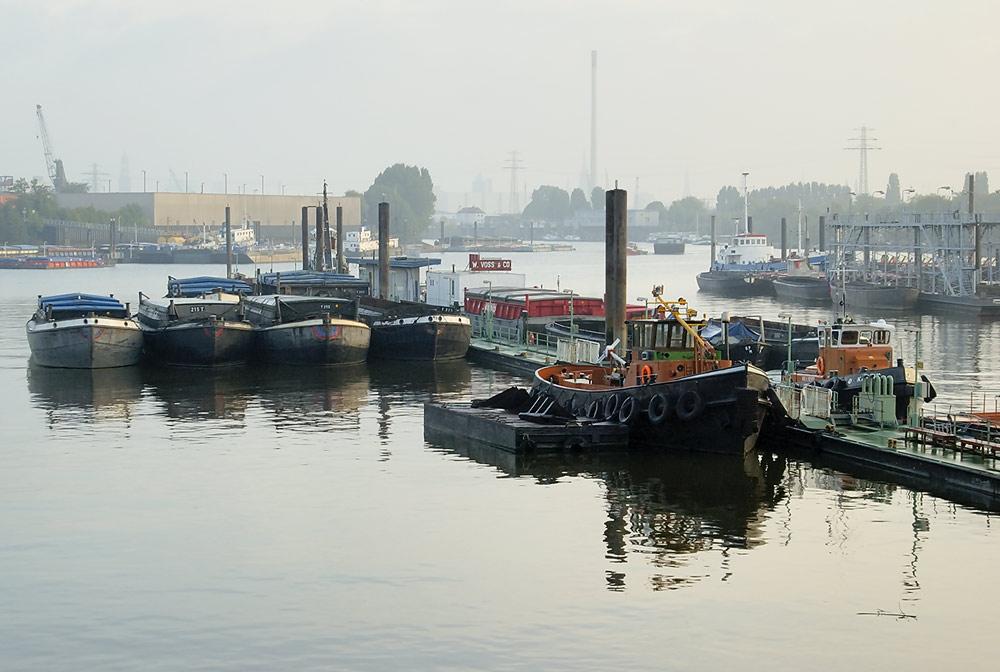 Hafenmorgen #3