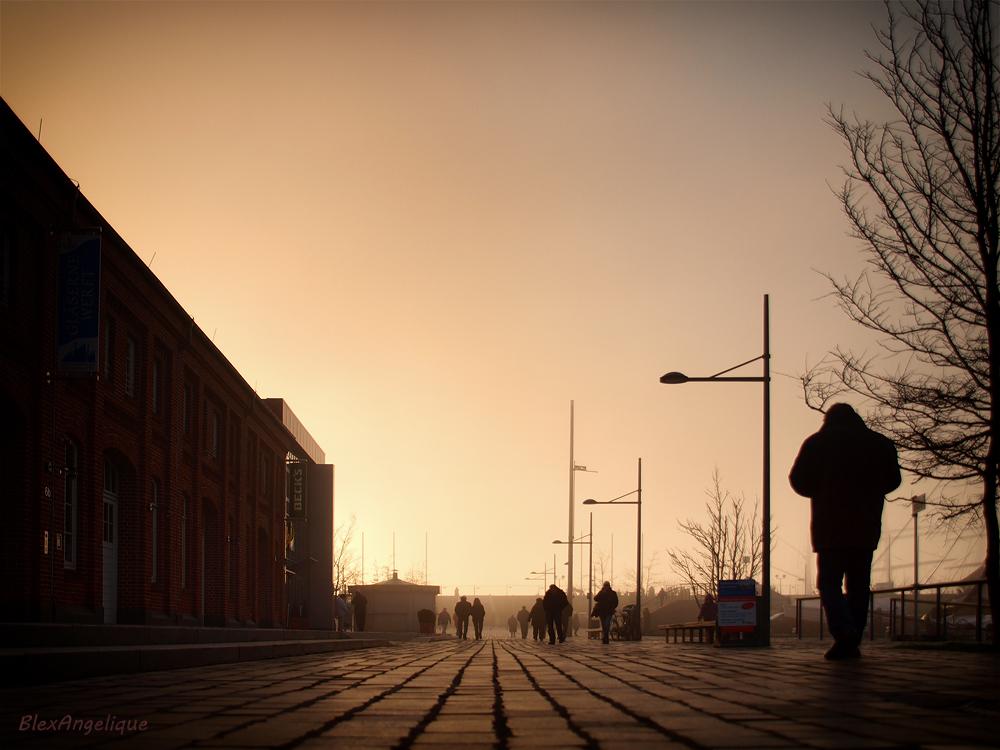 Hafenwelt im Nebel