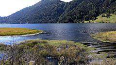 Haidersee Natursee