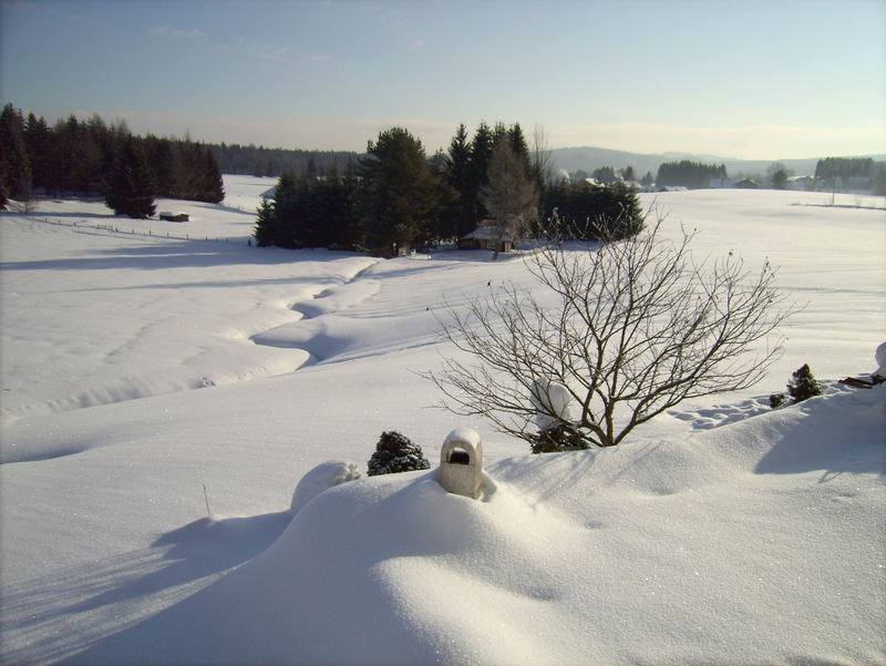 Haidmühle - Grillplatz im Schnee