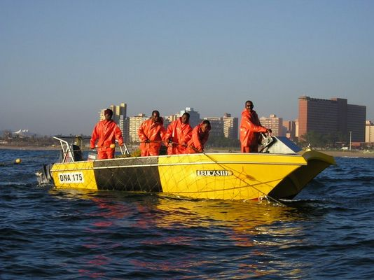 Hainetze vor Durban