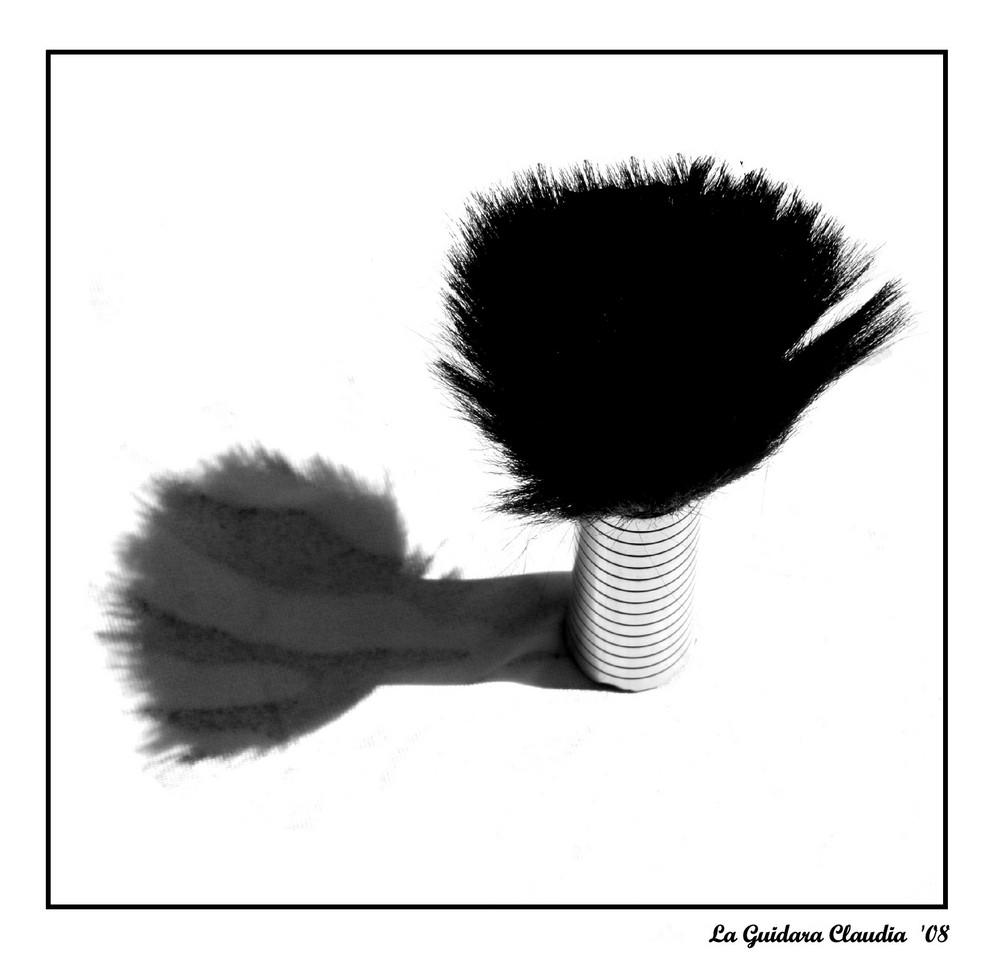 hair # 5