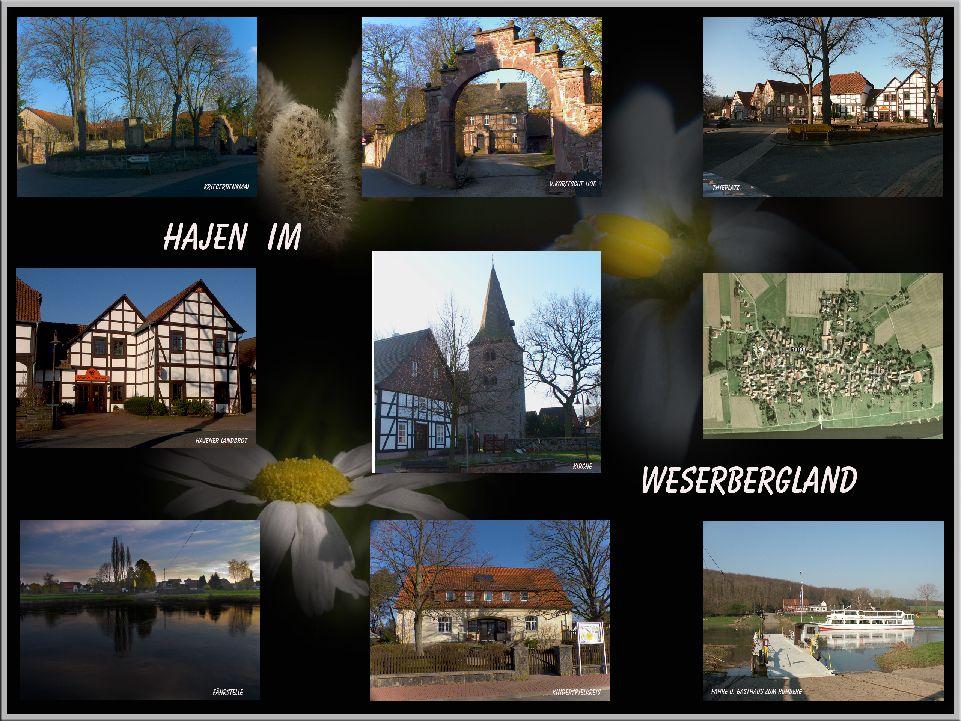 Hajen im Weserbergland