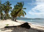 Halb Insel Samana / Dominican Rep