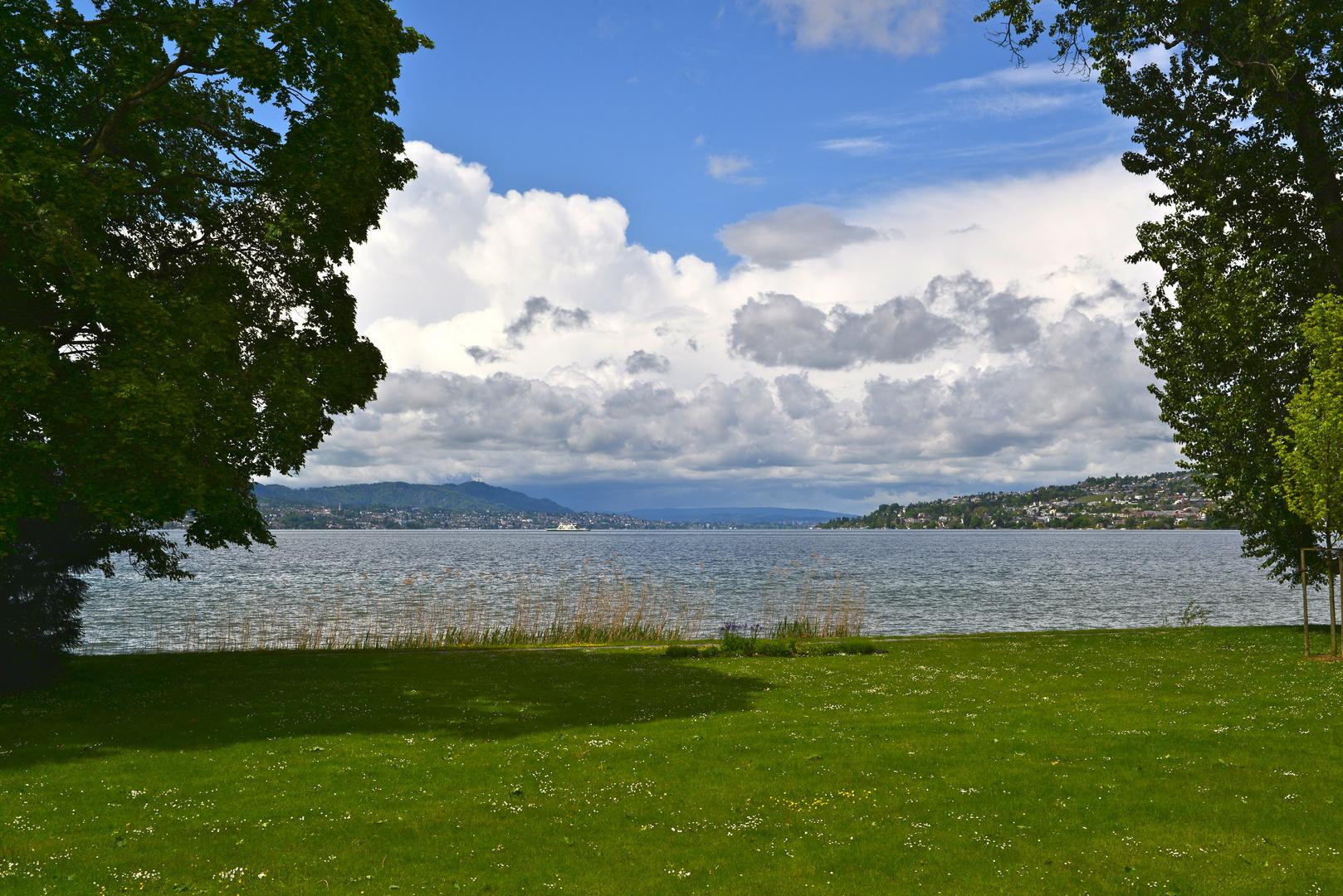 Halbinsel Au mit Blick nach Zürich