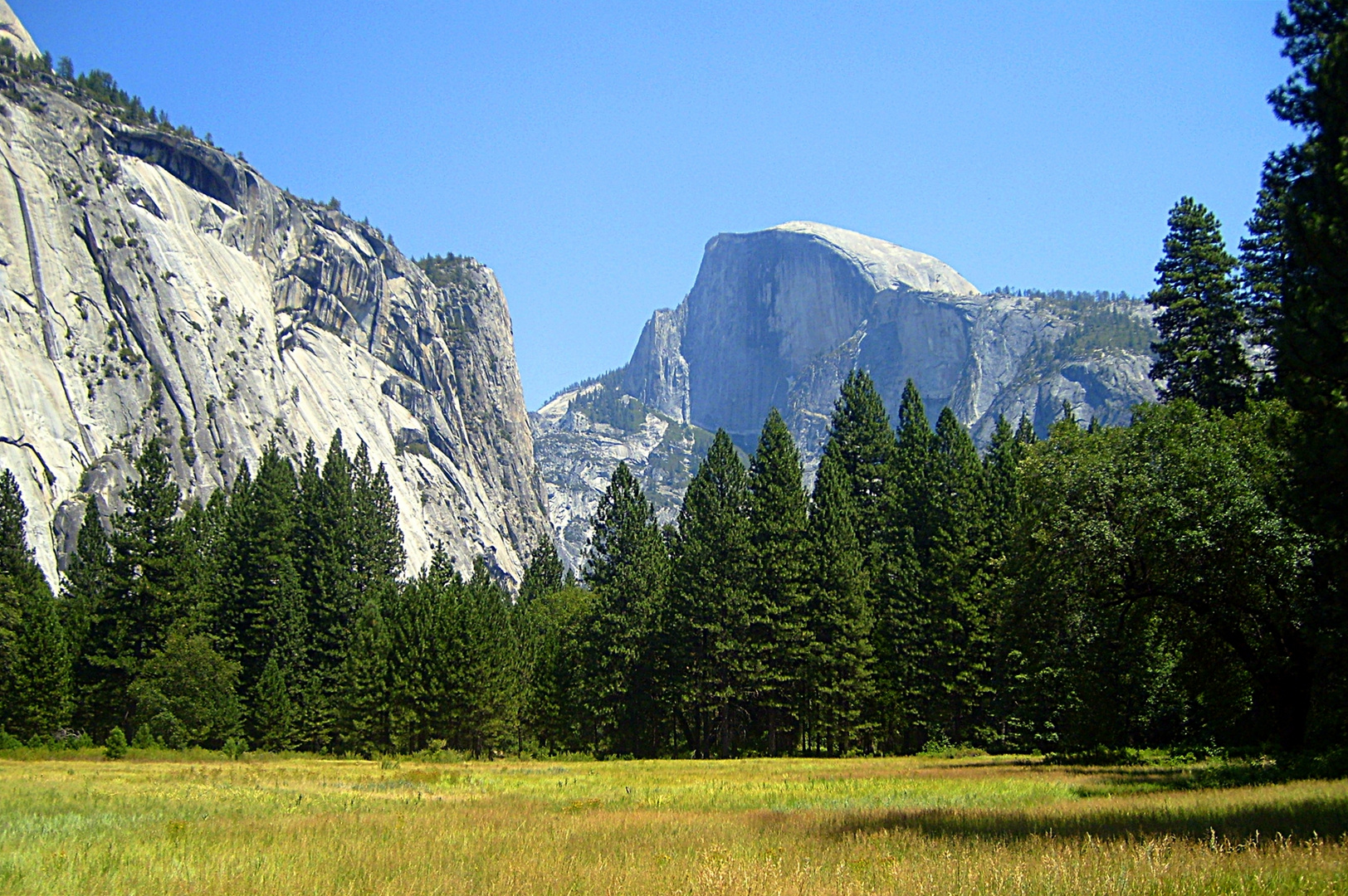 Half Dome - Yosemite N.P.