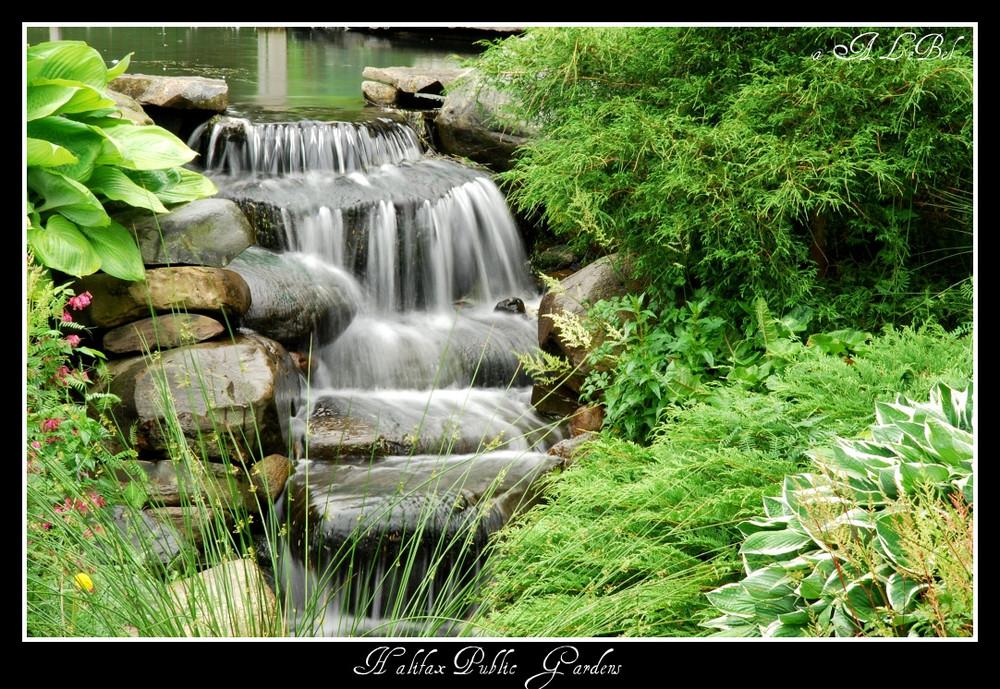 Halifax Public Garden!!