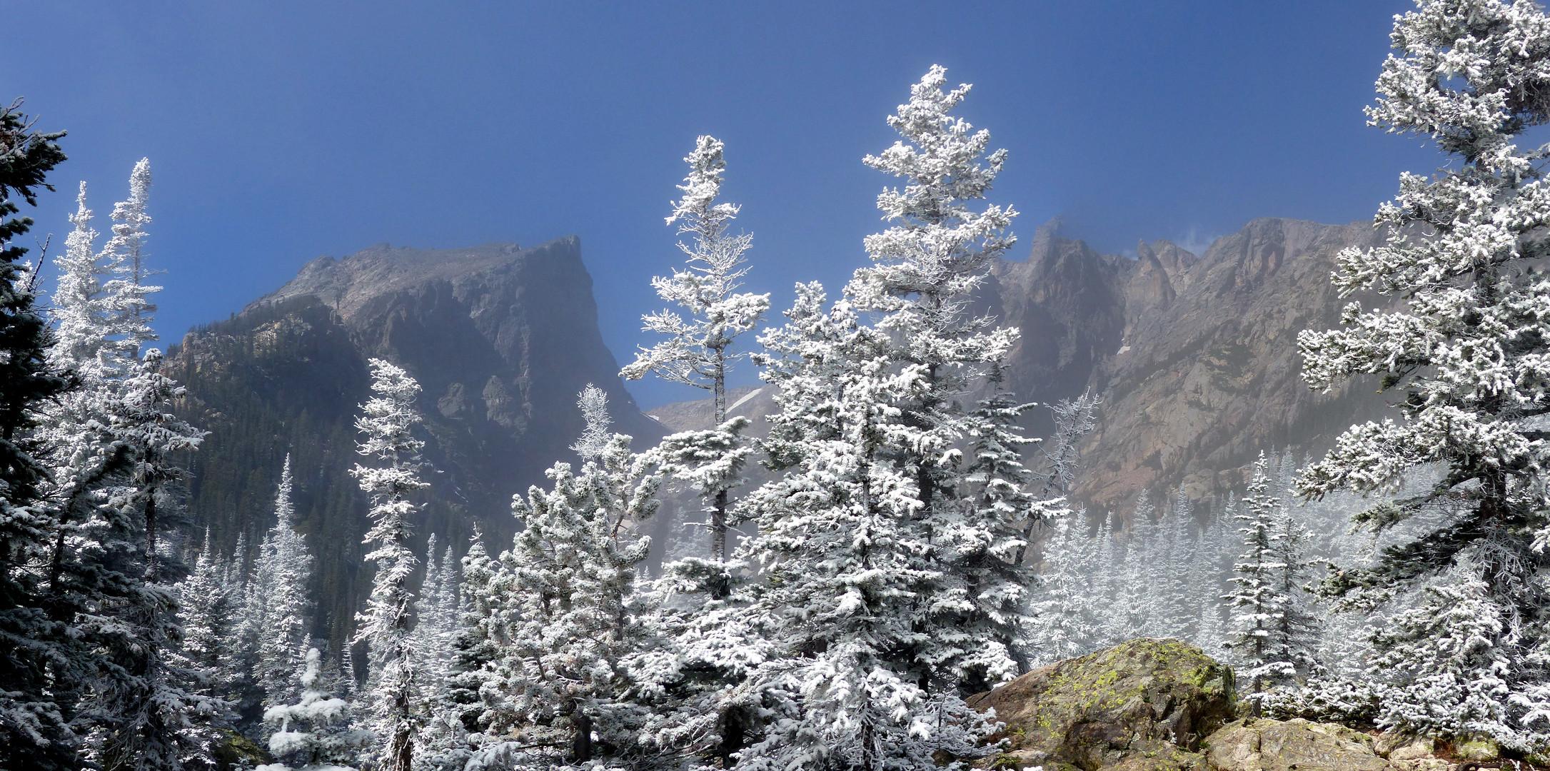 Hallet Peak im Rocky Mountain NP II
