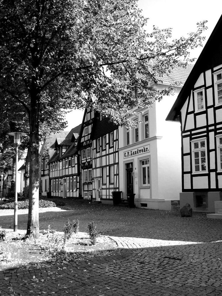 Halle/Westfalen