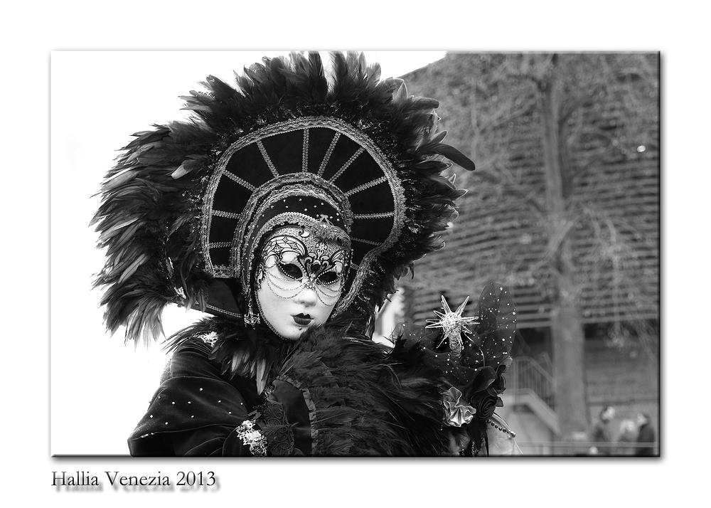 Hallia Venezia 2013 farblos 03