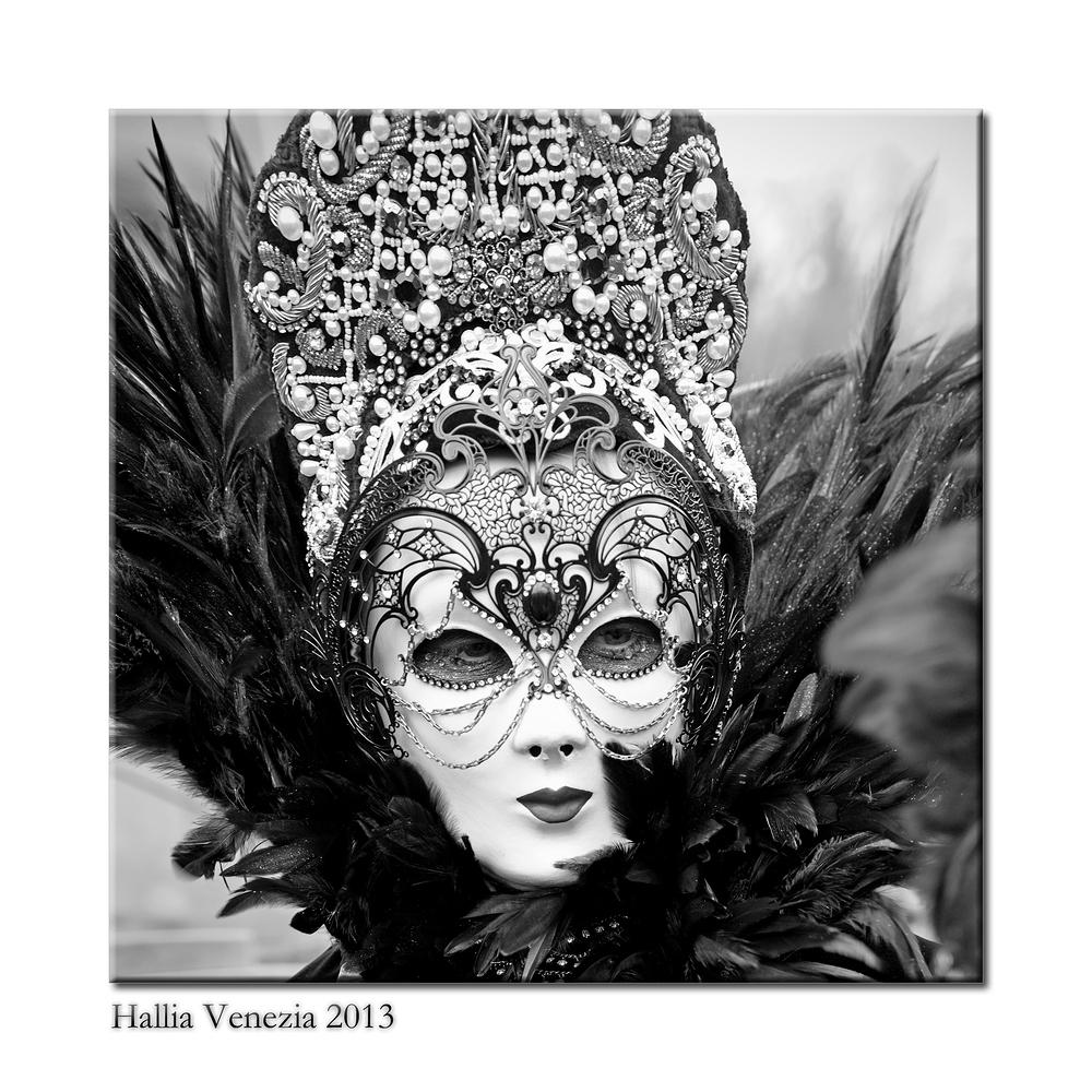 Hallia Venezia 2013 farblos 05