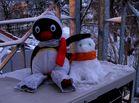 hallo, hab mir einen sneeepinguu gebaut - grüßchen pingu