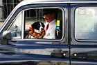 Hallo Taxi ...