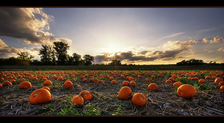 Halloween - 3