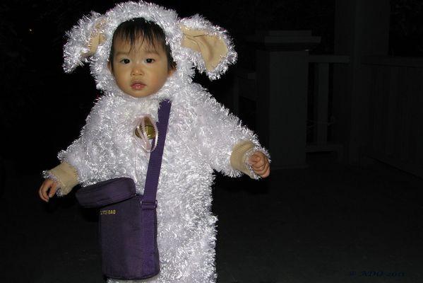 Hallowe'en Bunny