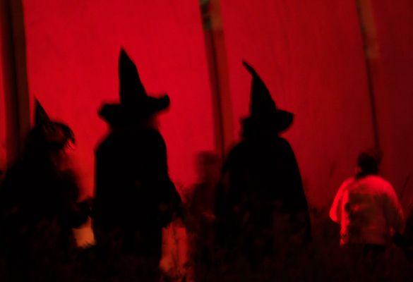 Halloween im Zoo Köln - Hexen unterwegs
