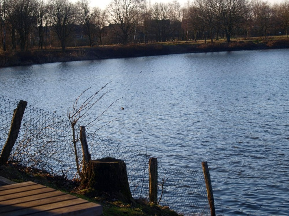Halterner Stausee - Nordufer. :)