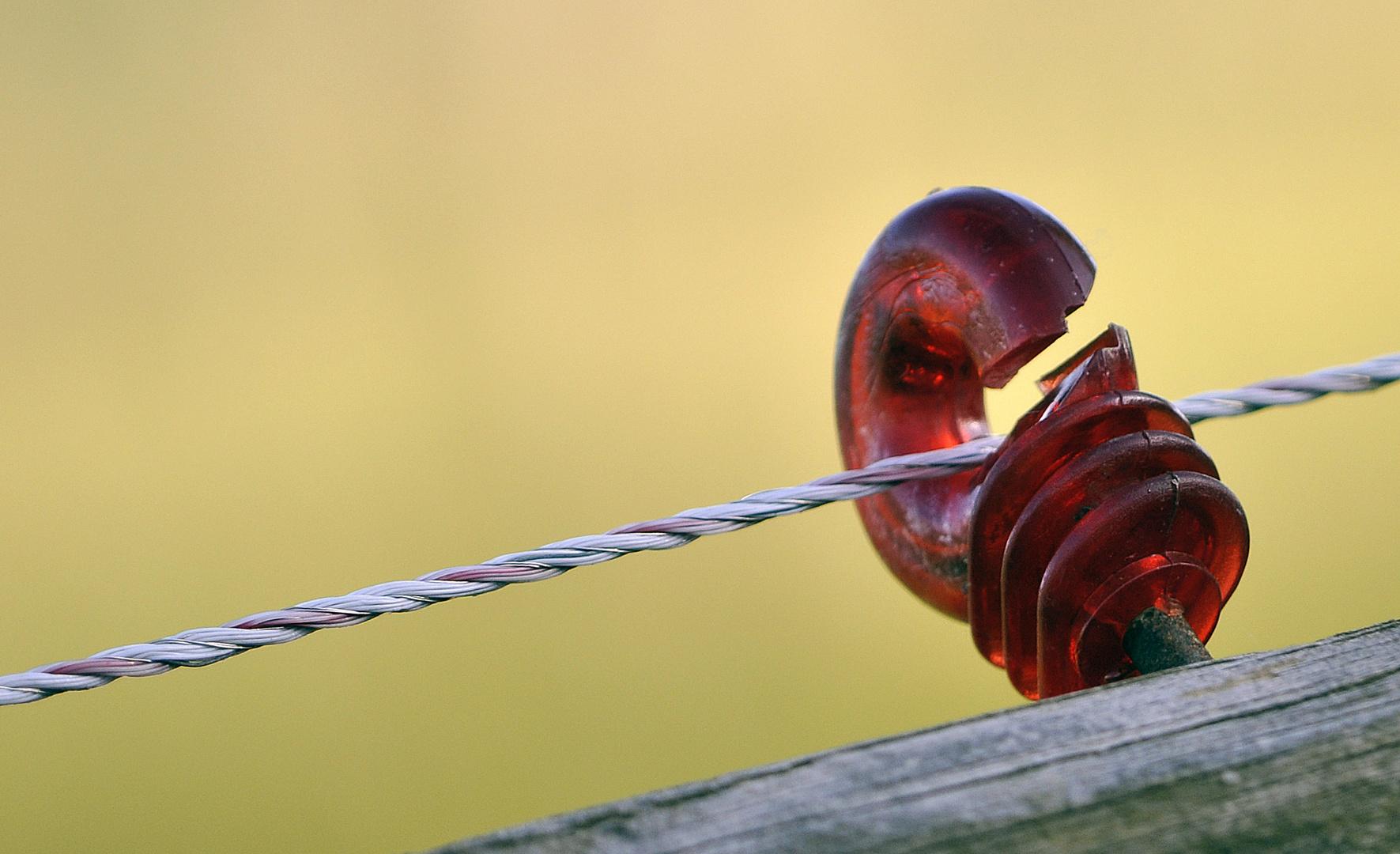 Halterung Elektrozaun Rot