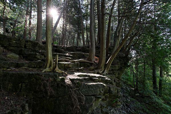 Halton Conservation Area, Ontario