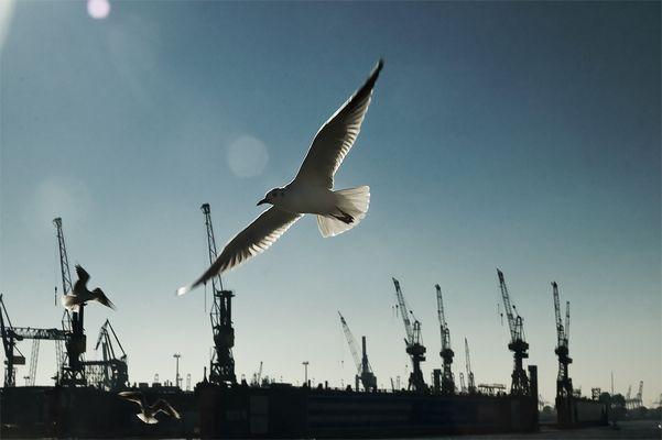 Hamburg eben