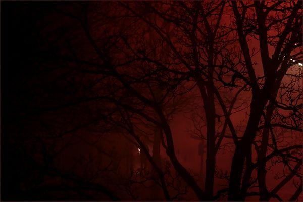 Hamburg im Nebel...