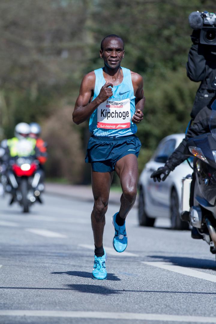Hamburg Marathon 2013 III