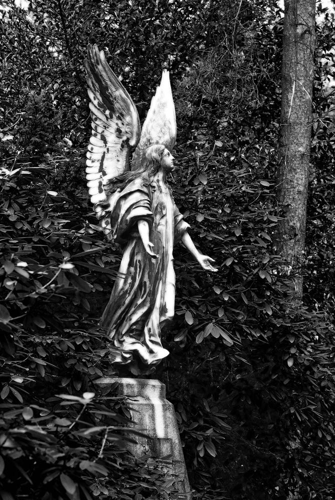 Hamburg Ohlsdorf Friedhof 1