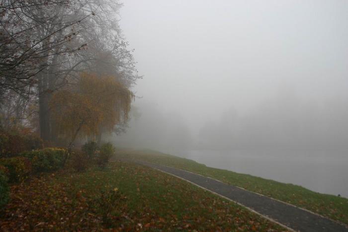 Hammerteich im Nebel
