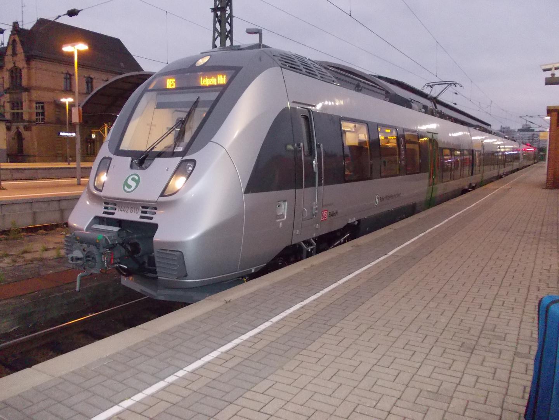 Hamster bei der S-Bahn in Halle