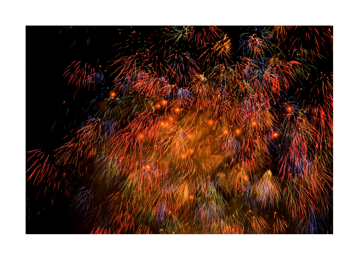 HANABI 3 / Firefly In Bamboo Thicket