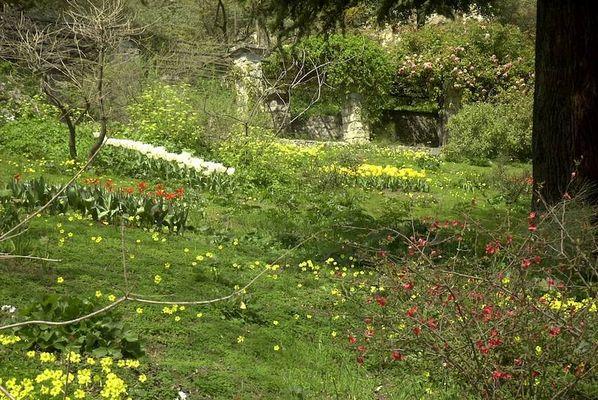 Hanbury Garten 2004 - 4