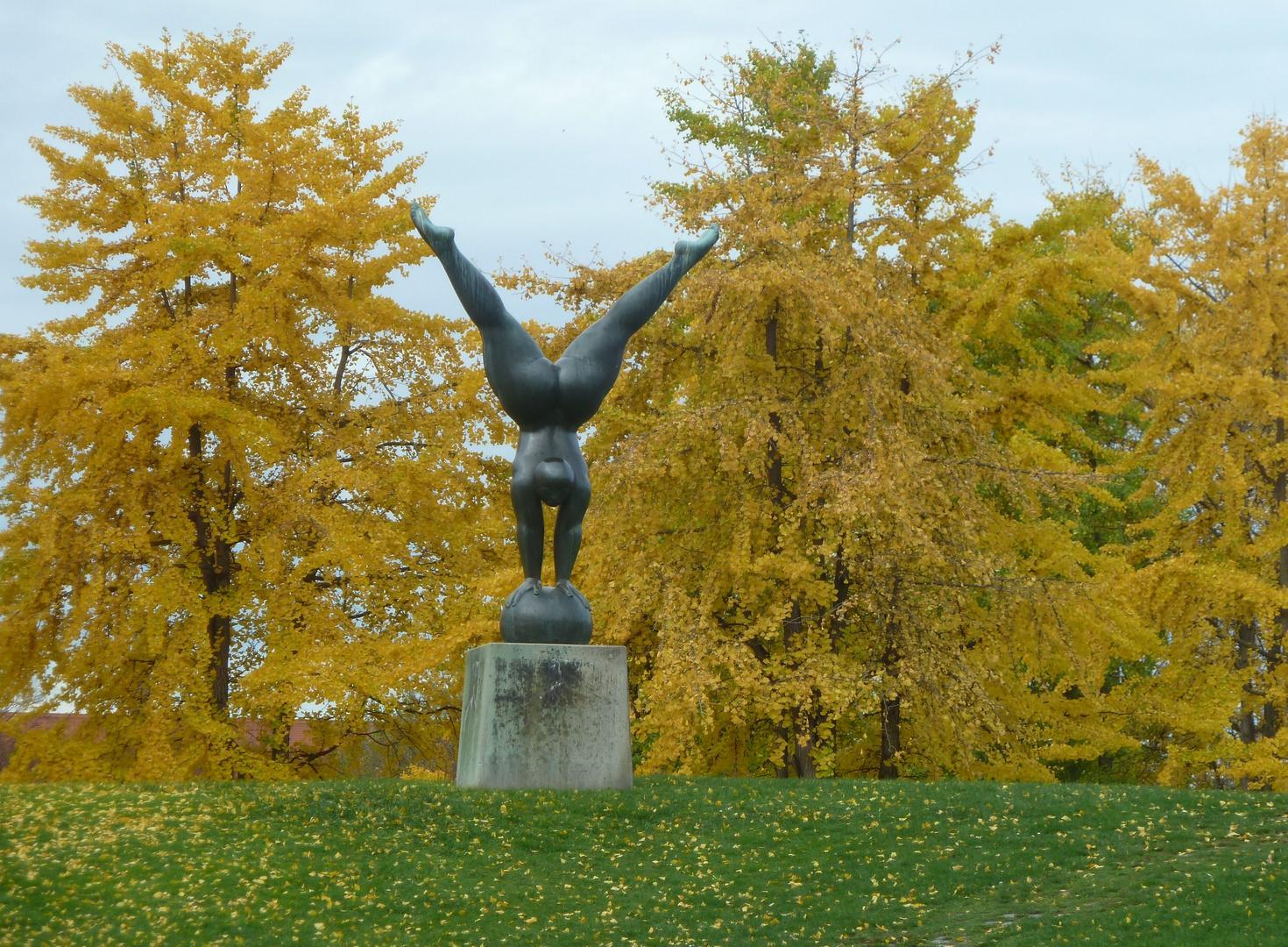Handstand in goldenem Ginkgo