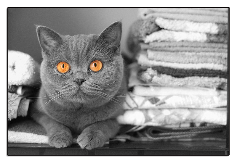 Handtuchcouching