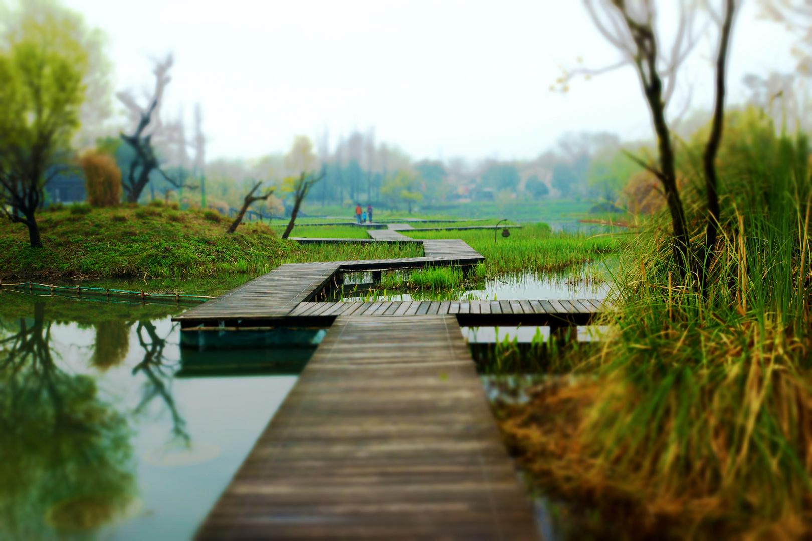 Hangzhou Wetlandpark