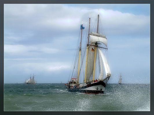 Hanse Sail 2008