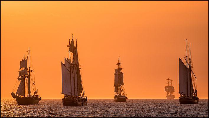 Hanse Sail 2015 (2)