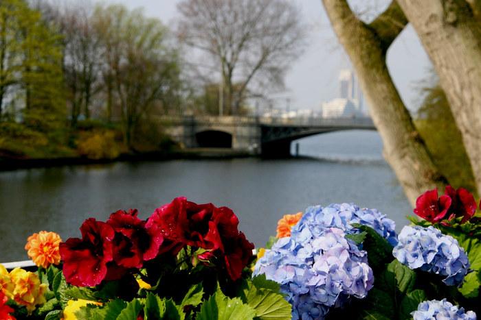 Hansestadt Hamburg: Alster im Frühling