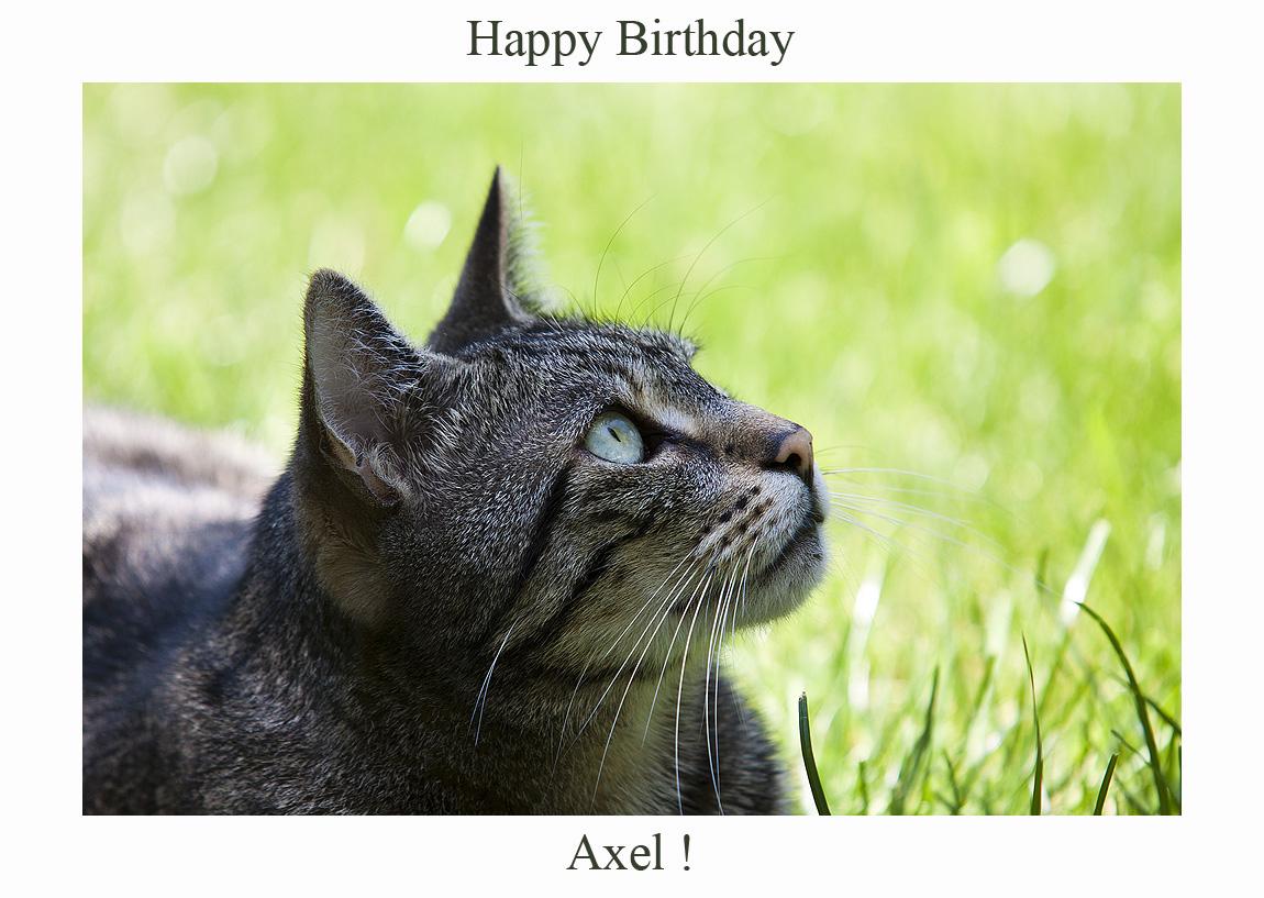Happy Birthday Axel!