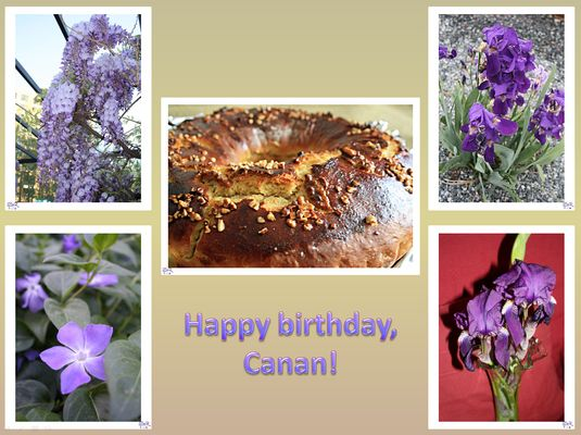 Happy Birthday Canan !!!