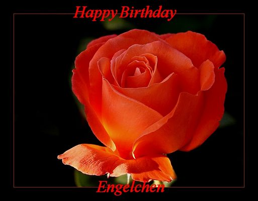 happy birthday ...Engelchen