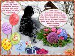 Happy Birthday, liebe Ilona!