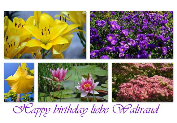 happy birthday liebe waltraud