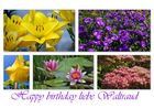 happy birthday liebe waltraud
