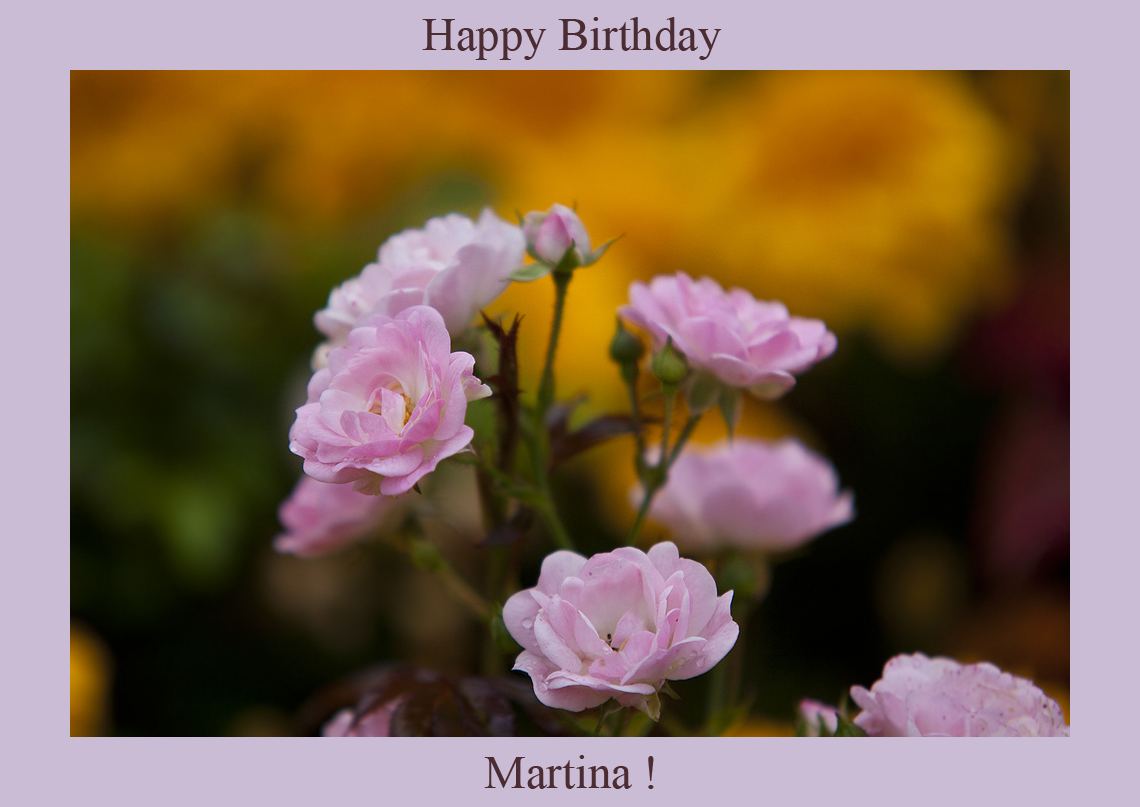 Happy Birthday Martina