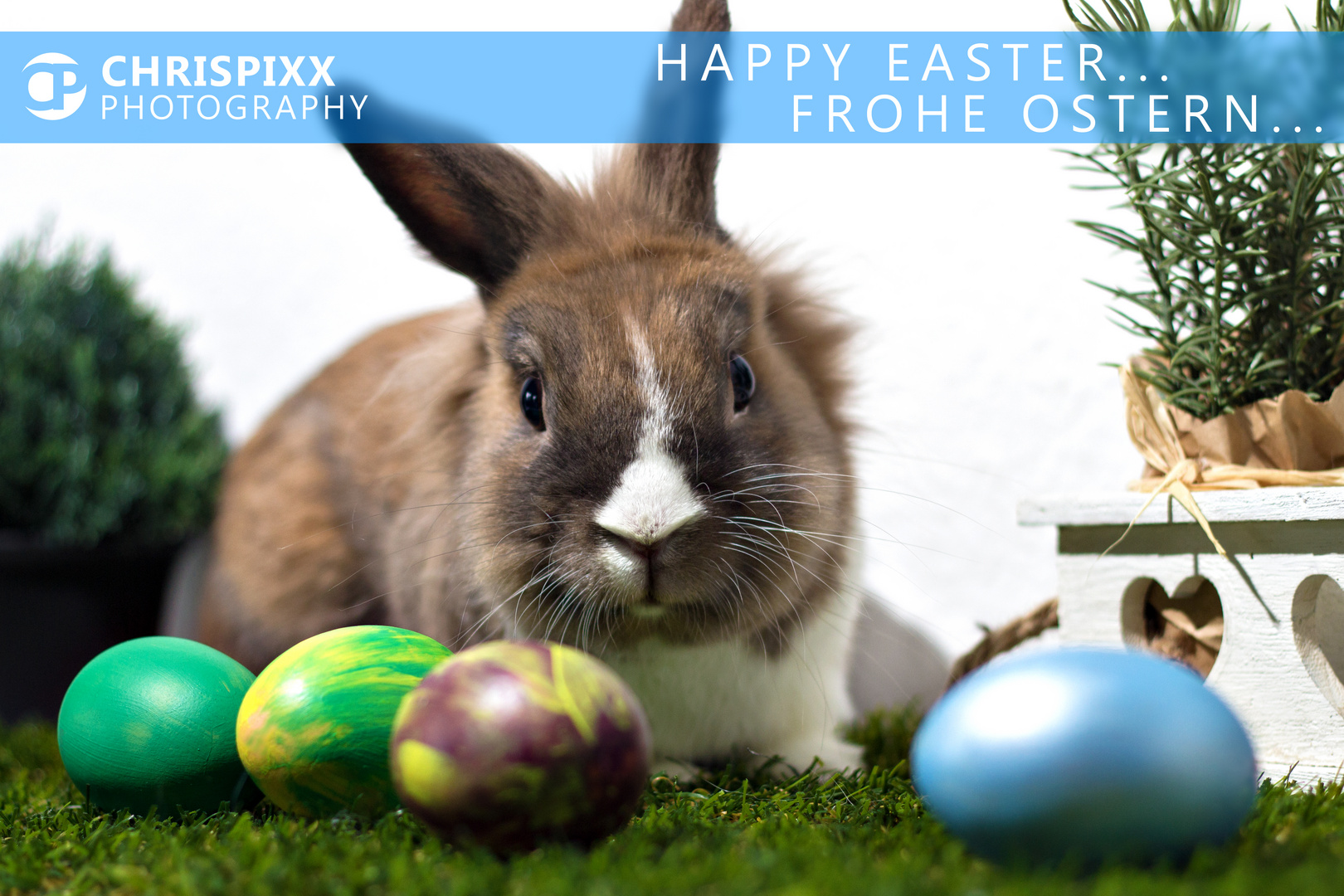 Happy Easter... frohe Ostern!
