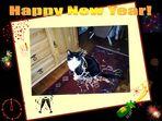 *Happy New Year! *    * Bonne annee! *    *Frohes Neues Jahr!*