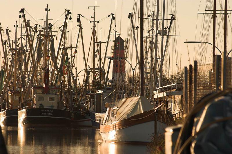 Harbour of Büsum one hour ago....