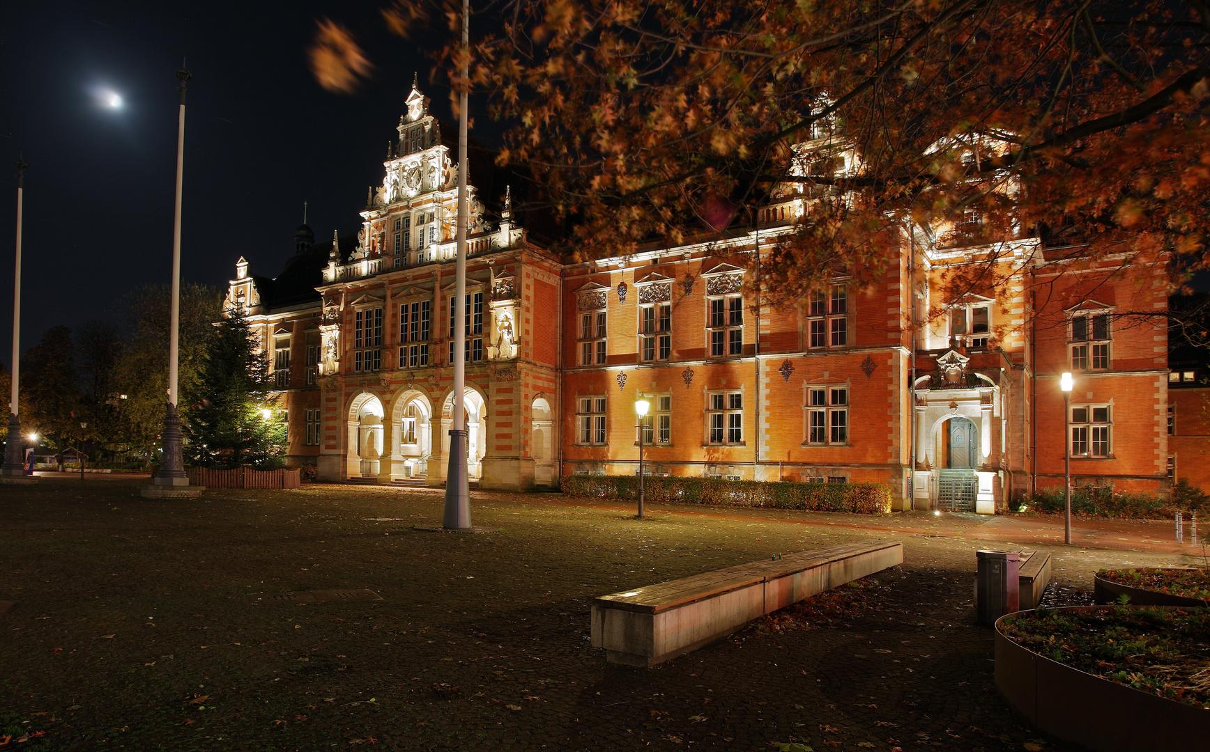 Harburger Rathaus 004