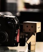Hard Working Assistant, Danbo