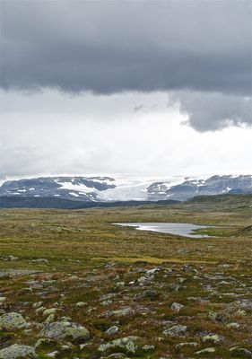 Hardangervidda Glacier